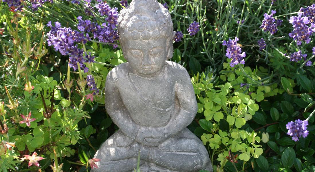 traum-spa-buddha