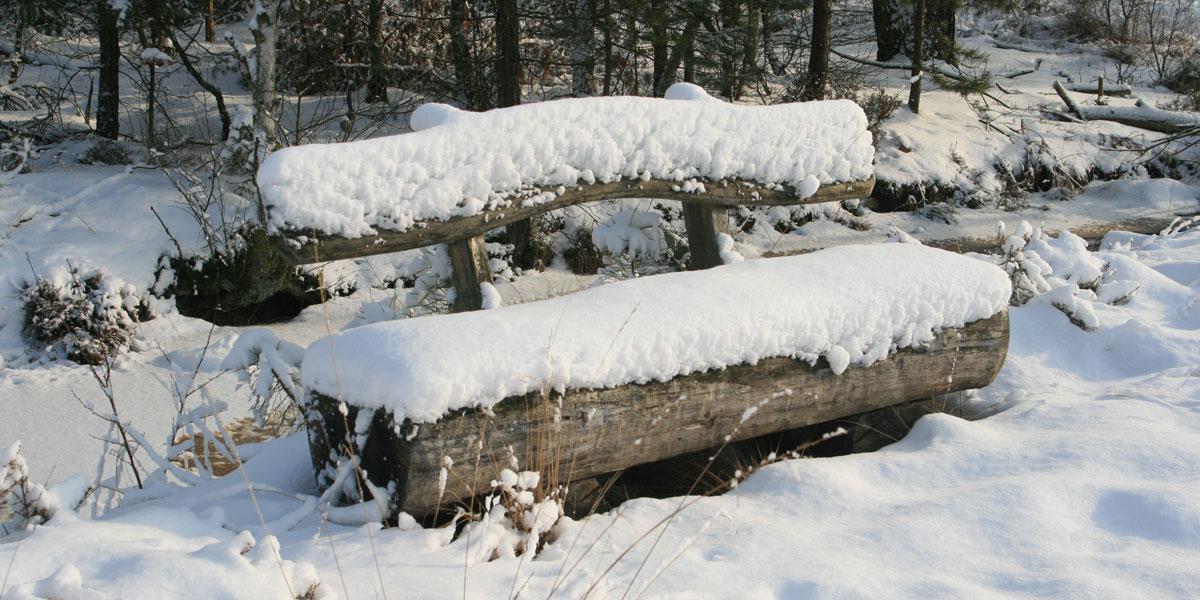 wellness-im-winter